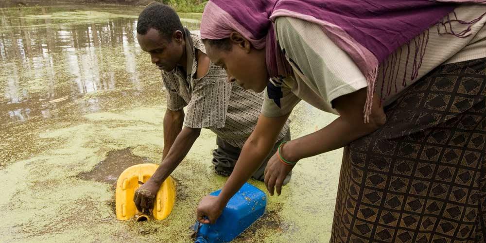 بیماری های ایجاد شده توسط آب آلوده  را بیشتر بشناسیم